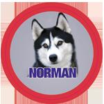 norman_logo